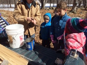 Mrs. LaFreniere explains how to drill into a maple tree and insert a spout.